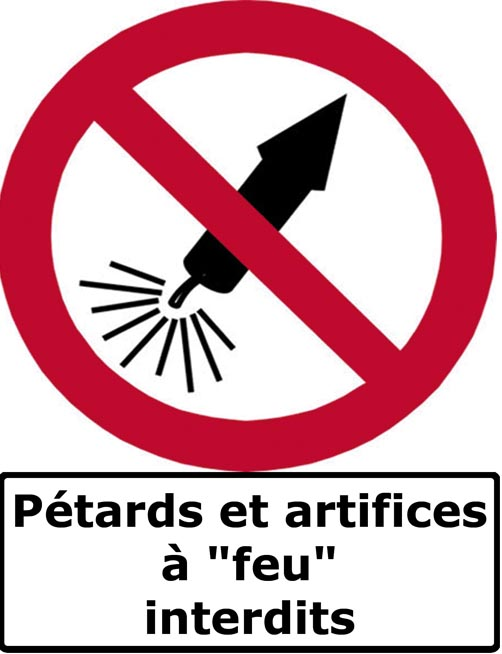 La charte  Petards%20artifices